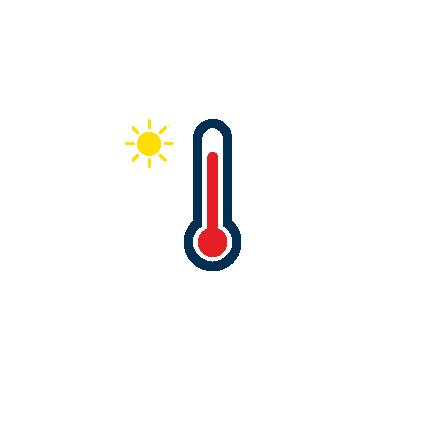 Groeit in warme klimaten.